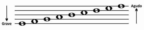 como ler partitura