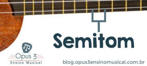 O que significa Semitom